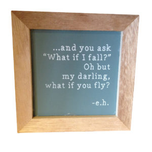 What if you fly? Plaque